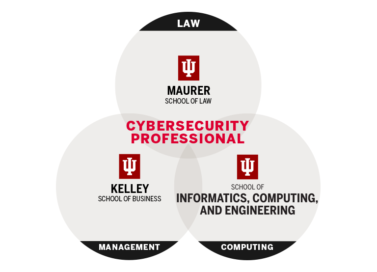 A Venn diagram showing that the cyberprofessional falls in the intersection law, management, and computing.